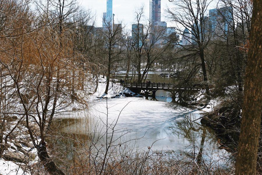 NYC-Central-Park-Tour