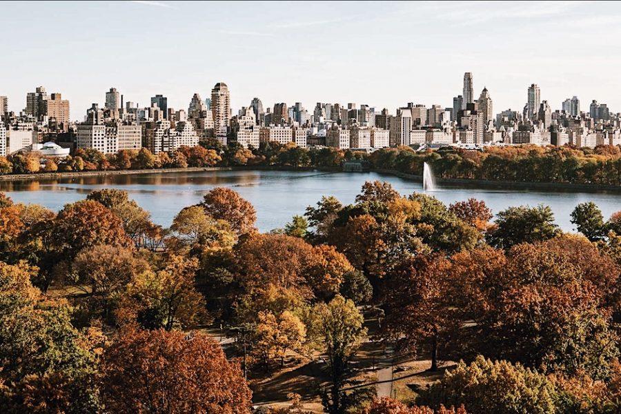 Park-Central-Tour-NYC-Park