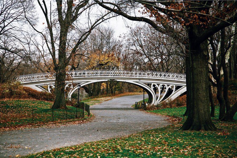 Tour-NYC-Park-Central-Tour