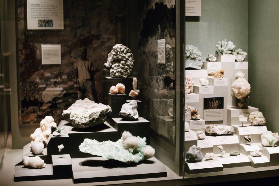 Washington-Museum-Tour-Natural-History-Smithsonian