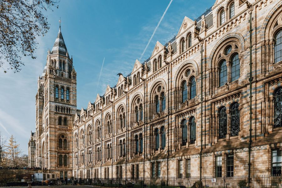 Museum-Tour-Guided-History-Tour-London